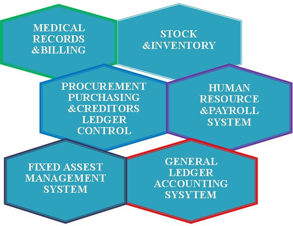A-Ilupeju-ENT-Hospital-_-The-Medical-Records,-Financial-and-Human-Resource-Operations-Organogram